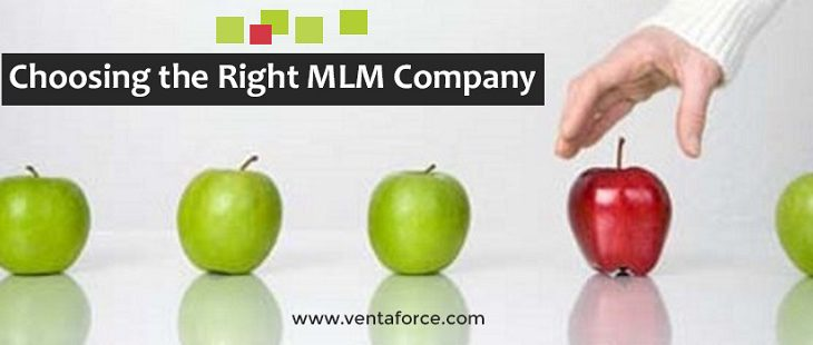 Choosing the Right MLM Company
